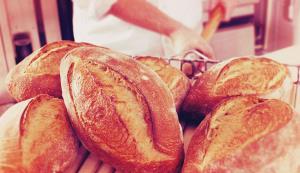 Boulangerie, Produits bio, Traiteur secteur Lorient (56) - Bureau Local Entrepôt